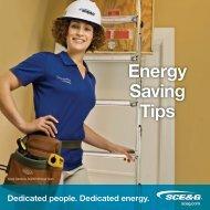Energy Saving Tips Brochure - SCE&G