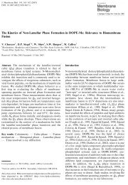 The Kinetics of Non Lamellar Phase Formation in DOPE-Me ...