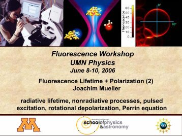 Fluorescence Lifetime + Polarization