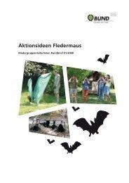 Aktionsideen Fledermaus - Umweltbildung in der Offenen ...