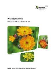 Pflanzenkunde - Umweltbildung in der Offenen Ganztagsschule