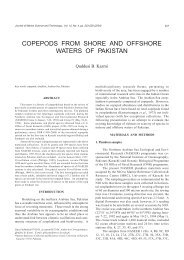 copepods from shore and offshore waters of pakistan - Luciopesce.net