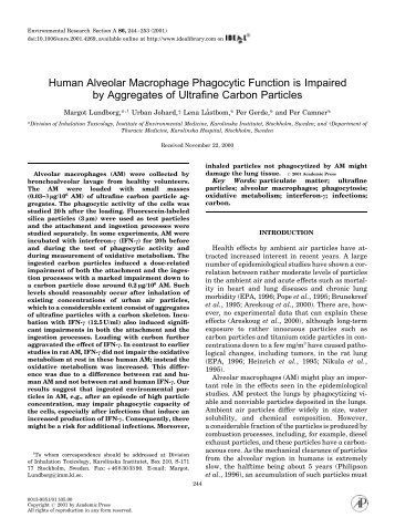 Human Alveolar Macrophage Phagocytic Function is ... - Precaution