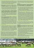 Info bulletin SMO květen+červen 2011 - Svaz marginálních oblastí - Page 3