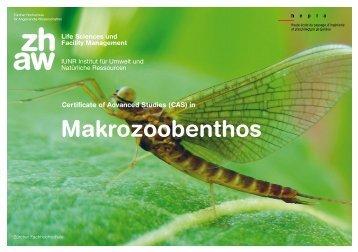 Makrozoobenthos - Naturschutz.ch
