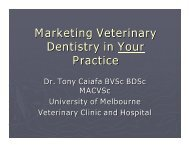 Marketing Veterinary Dentistry in Your Practice