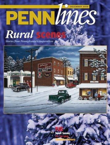 December 2008 - PREA - The Pennsylvania Rural Electric Association