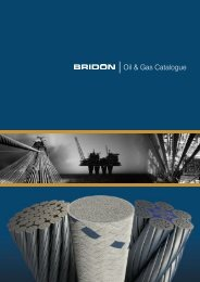 Oil & Gas Catalogue - Bridon