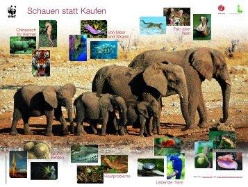 CITES Posterfolder-Posterseite_klein - Umweltbundesamt