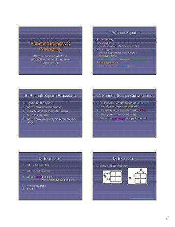 punnett squares probability teachers greenville k12 sc us punnett ...