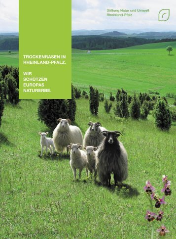 Gerne stellen wir Ihnen diese Publikation als PDF - Stiftung Natur ...