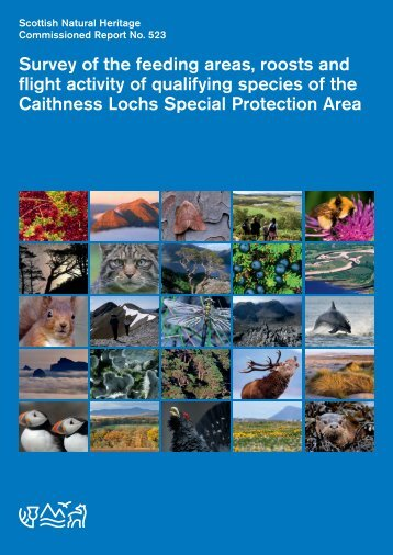 Survey of the feeding areas, roosts and flight activity of qualifying ...