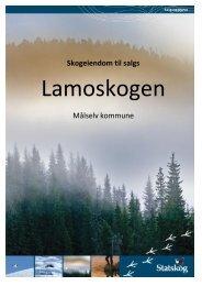 Salgsoppgave Lamoskogen - Statskog