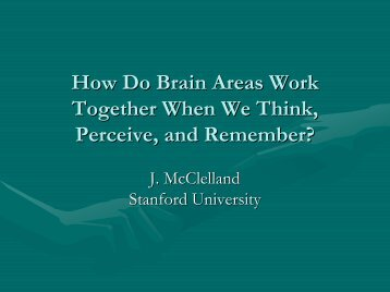 How Do Brain Areas Work Together When We Think, Perceive, and ...