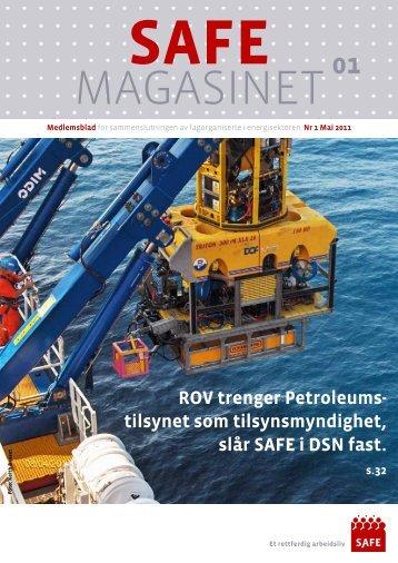 nr. 1-2011 - Safe