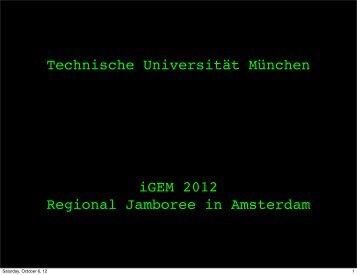 TU Munich Presentation - iGEM 2012