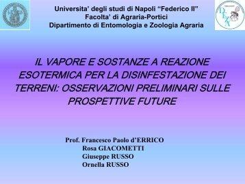 sostanze a reazione esotermica - Prof. Francesco Paolo D'Errico