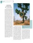 uses a pole to help him climb up a fodder tree, Khaya - Bois et forêts ... - Page 4