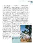 uses a pole to help him climb up a fodder tree, Khaya - Bois et forêts ... - Page 5