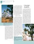 uses a pole to help him climb up a fodder tree, Khaya - Bois et forêts ... - Page 6