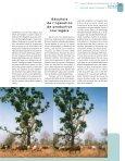 uses a pole to help him climb up a fodder tree, Khaya - Bois et forêts ... - Page 7