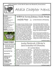 Atala Chapter News - North American Butterfly Association