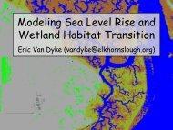 Modeling Sea Level Rise and Wetland Habitat Transition