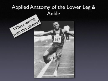 Applied Anatomy of the Lower Leg & Ankle
