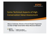 Some Technical Aspects of High Conservation Value Assessment