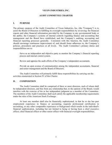 AUDIT COMMITTEE CHARTER - Vicon