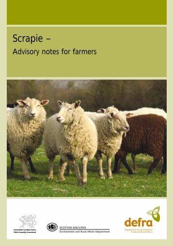 Scrapie - Advisory notes for farmers
