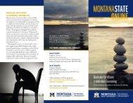 Program Brochure - Extended University - Montana State University