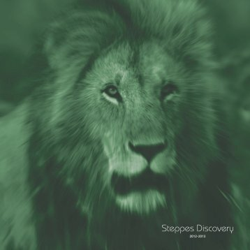 Discovery Brochure - Steppes Discovery