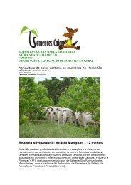 Integração Lavoura, Pecuária e Floresta em todo território nacional