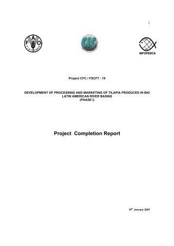 NCHIP Project Completion Report U2013 Pioj.gov.jm Special Study Project  Completion Report Assessment (Regional) March 2011 Vi Executive Summary .