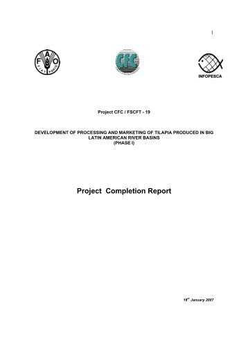 Project Completion Report   Infopesca