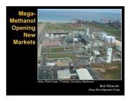 Zeus Development Corp Mega- Methanol Opening New Markets ...