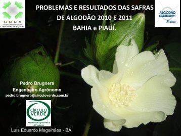 PROBLEMAS E RESULTADOS DAS SAFRAS DE ... - Abrapa