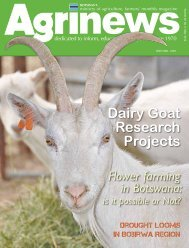 Dairy Goat Research Projects - Ministry of Agriculture