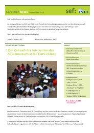 SEF/INEF News September 2013