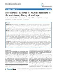 Mitochondrial evidence for multiple radiations in ... - BioMed Central