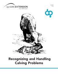 Recognizing and Handling Calving Problems - Department of ...