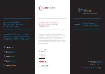 Diem Solutions brochure - Diem Enterprise Solutions