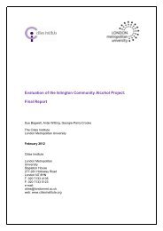 CAP Final Report - Cities Institute
