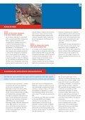 DEFINITIEF jaarverslag (3).pdf - IRO - Page 5