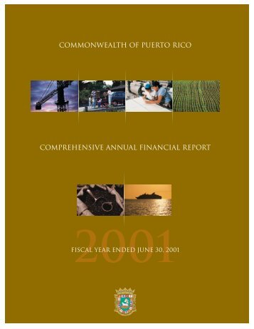 commonwealth of puerto rico comprehensive annual financial report