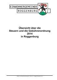 Übersicht über die Steuern und die ... - Roggenburg