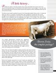A little history - Canadian Brown Swiss & Braunvieh Association - Page 3