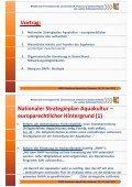 Nationaler Strategieplan Aquakultur - DAFA - Seite 3