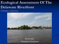 Ecological Assessment Of The Delaware Riverfront